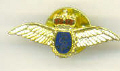 Lapel pin - Fleet Air Arm