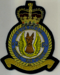 RAF BLAZER BADGE - SQNS 1 - 25