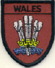 Embroidered Badges - Wales (Feathers)